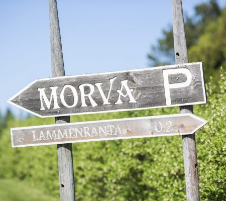 morva_karavaanari